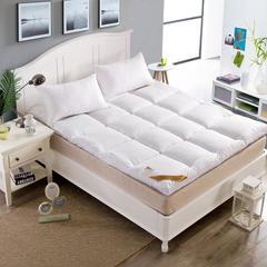 床垫羽丝绒床垫 90*200 白色