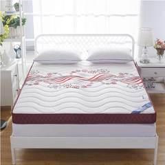 记忆海绵床垫10cm 180*200cm 魅红