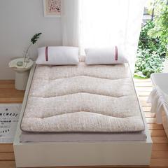 依诺床垫 磨毛2层加厚床垫 150*200cm 波斯顿