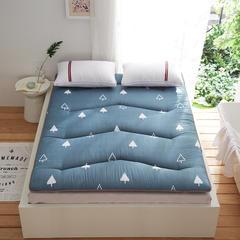 依诺床垫 磨毛2层加厚床垫 120*200cm 蓝色树林