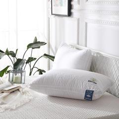 绣花纤维枕 48*74cm