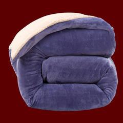 顺纺羊羔绒法莱绒可拆洗活套冬被+羊羔绒被子 150x200cm5斤 紫色