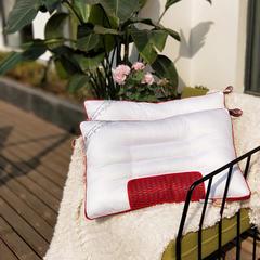 启艾枕芯   2018新品  水洗决明子定型枕(红色网) 水洗决明子定型枕(红色网)