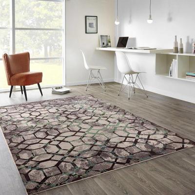 地毯地垫门垫系列时尚印花地毯 0.8*1.5米 106