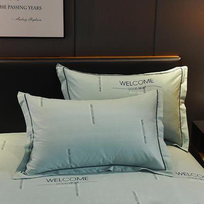 2018年新款全棉活性磨毛单品枕套款 48cmX74cm 夜幕降临-绿
