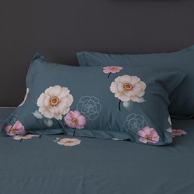 2019新款-冬季32s全棉活性生态磨毛单件枕套 常规48cmX74cm/对 迷恋