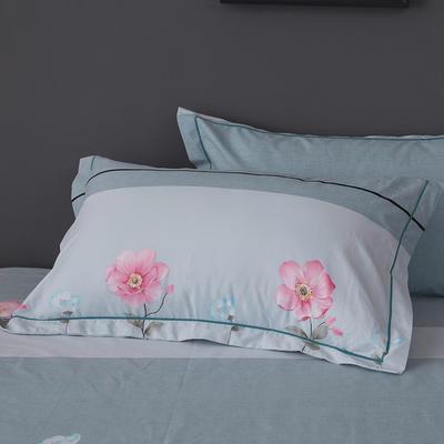 2019新款-冬季32s全棉活性生态磨毛单件枕套 常规48cmX74cm/对 安娜花园-绿