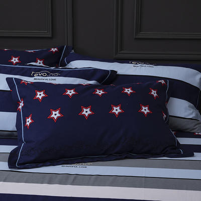 2019新款-冬季32s全棉活性生态磨毛单件枕套 常规48cmX74cm/对 灿烂星光