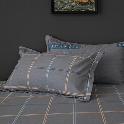 2019新款-冬季32s全棉活性生态磨毛单件枕套 常规48cmX74cm/对 摩卡时光-灰