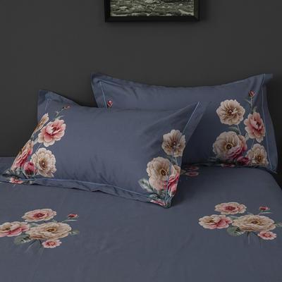 2019新款-冬季32s全棉活性生态磨毛单件枕套 常规48cmX74cm/只 绚丽多姿-蓝