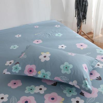 2020新款-13070单枕套 48cmX74cm/一对 花影芳菲-兰