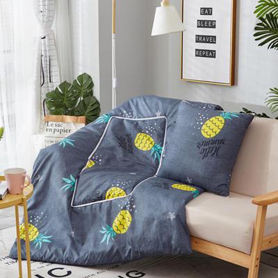 2018新款抱枕被-纳米印花抱枕被ok 小号40*40打开105*145 菠萝