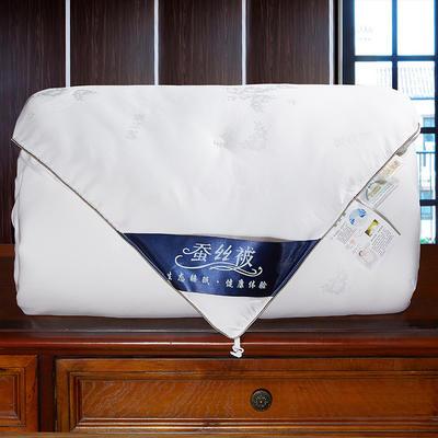2020新款莫代尔夏被蚕丝被子夏凉被芯二合一蚕丝子母被 150x200cm3斤 白色