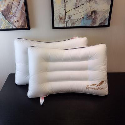 弧形刺绣水洗枕 弧形水洗枕