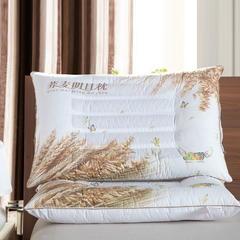 3D炫彩荞麦保健枕 3D炫彩荞麦保健枕