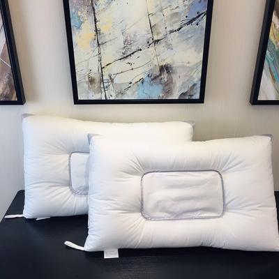 可拆卸药包水洗羽丝绒枕 可拆卸药包水洗羽丝绒枕