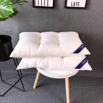 新品玻尿酸水洗护颈枕头枕芯