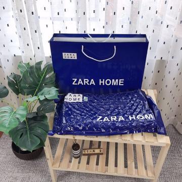 ZARA促销乳胶枕头