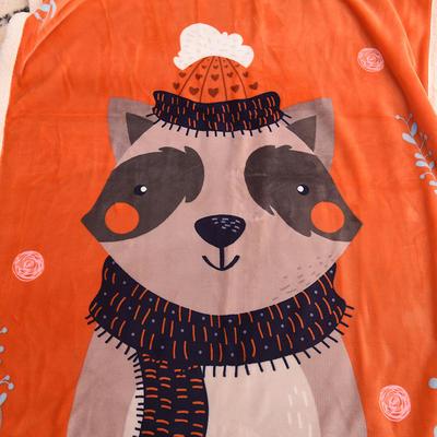 新款羊羔绒卡通毯 100*140cm羊羔绒 小浣熊