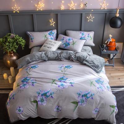 2018新款- 棉加法莱绒250克包边款四件套 床单款1.2m(4英尺)床 HL-花念
