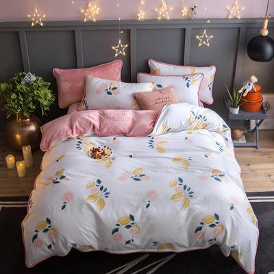 2018新款- 棉加法莱绒250克包边款四件套 床单款1.2m(4英尺)床 柚香