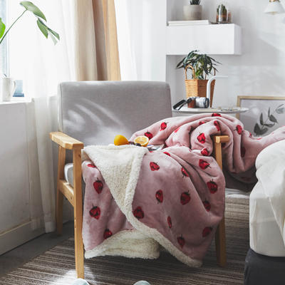 来菲毯业双层复合印花羊羔绒加厚冬季外贸保暖珊瑚绒毛毯法兰绒毯子 150*200CM 柏瑞