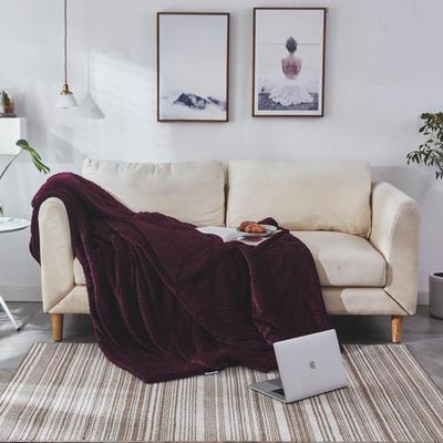 来菲毛毯2019新品加厚双层秋冬绒毯保暖毯子纯色铺盖沙发床用多功能 100*120cm 童紫