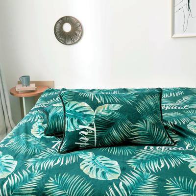 2020新款云貂绒枕套法兰绒枕芯套 单人珊瑚绒保暖枕套可搭配毛毯 45CMX75CM/只 龟背竹