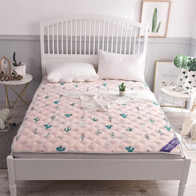 2018新款水洗棉床护垫床垫垫子 1.2*2.0 沙漠之旅
