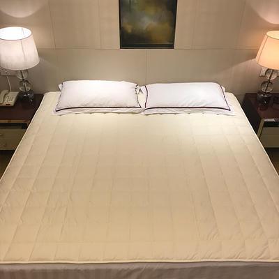 2019新款 全棉夹棉床护垫空调软垫纯色可水洗机洗 0.9*2.0m 白