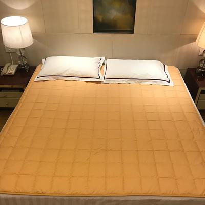 2019新款 全棉夹棉床护垫空调软垫纯色可水洗机洗 0.9*2.0m 驼