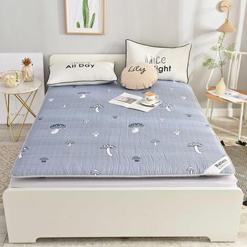 2019新款 亲肤棉加厚防滑床垫-6cm床垫床褥子垫背学生床垫可折叠