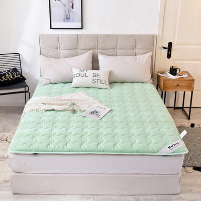2019新款 水洗棉加厚防滑床垫 0.9*2.0 水绿