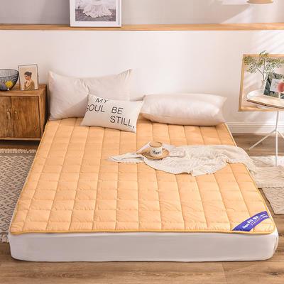 2019新款 全棉床护垫-影棚图 1.2*2.0m 驼