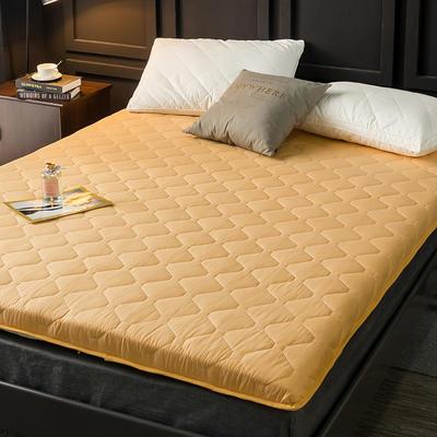 2020新款磨毛加厚防滑床垫 0.9m 黄
