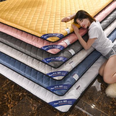 2021新款仿真丝加厚床垫 120*200cm 高级灰-5cm加厚款