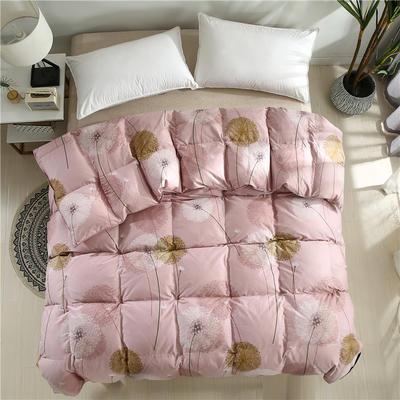 2020精梳棉印花系列冬被被子被芯 180*220cm(5.5斤) 全棉印花豆
