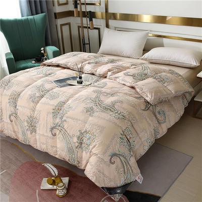 2020新款摩卡绒系列冬被被子被芯 220x240cm(6.5斤) 摩卡绒卡其