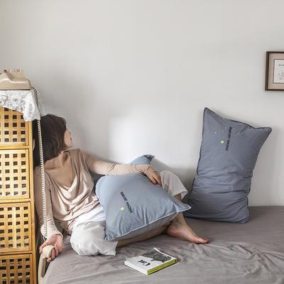 2021新款13372全棉水洗棉刺绣套件系列—单品枕套 48cmX74cm/个 太空梦
