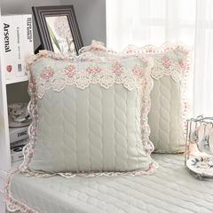 共鸣沙发垫 素色水洗棉抱枕套 可定制 45x45cm抱枕套 水洗棉浅绿