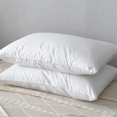 2018枕芯系列二45*75/只 白色1000g