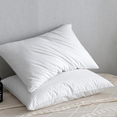2018枕芯系列二45*75/只 白色 1200g