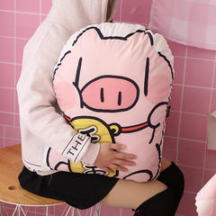 网红款超大二次元卡通可爱发财猪猪绒面抱枕暴富靠垫坐垫靠枕头pp棉 压缩尺寸45cm*60cm 暴富猪