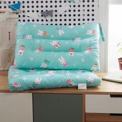 枕头类 学生水洗定型枕芯(38*58) 贝蒂兰
