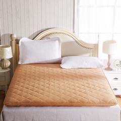 【垫之坊】磨毛加厚纯色榻榻米床垫子床褥地垫 90*200cm 驼色