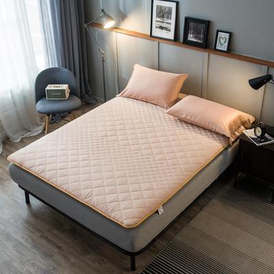 全棉英威达抗菌防螨纤维填充加厚床垫床褥子 斜纹纯棉面料 90x200cm 驼色