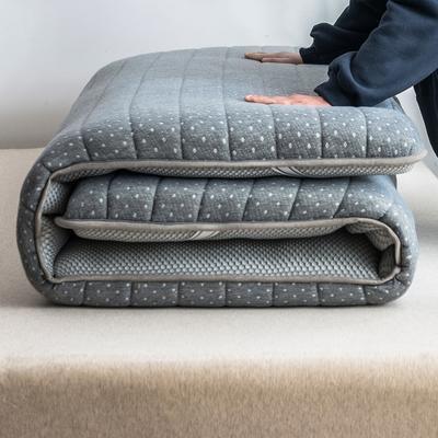 2019年新款乳胶床垫记忆高回弹床垫防塌陷垫加厚地垫6cm10cm 90X190CM 9CM繁星点点