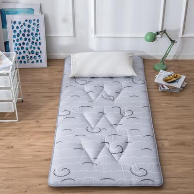 2019新花色单人学生床磨毛印花W单针绗缝床垫高性价比爆款打造 90X200CM 畅想