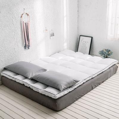 2019年新款羽丝绒床垫软床褥可折叠 90*200cm 白色