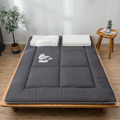 爆款推荐 北欧良品风格 简约家居 床垫床褥子学生单人双人 0.9*2.0学生 小黑格